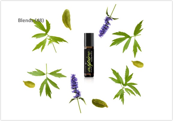 Essential oils Aromatherapy Wellness Consult